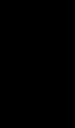 Размеры полуколонны 1.10.204
